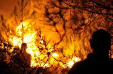 SCHOORL - In het duingebied van Schoorl is woensdagmiddag rond half zes opnieuw een grote brand uitgebroken. De brand woedt rond natuurgebied De Kerf en beslaat een gebied van 300 bij 300 meter. Meerdere brandweerkorpsen zijn in actie om de brand te blussen. ANP MAURICE AMOUREUS