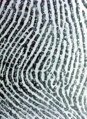 British Metropolitan Police handout photo of the thumb print. Police will get new powers to take fingerprints and DNA from anyone they arrest under new Home Office proposals unveiled Thursday 27 March 2003. Officers can currently only take such samples from suspects once they have been charged with a crime. Ministers said the controversial move would allow police to verify an arrested person¬s identity, preventing people who are wanted for earlier crimes from slipping through their grasp by giving a false name and address.