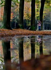 BAARN - Een gezinnetje geniet zondag van het milde herfstweer in de kleurrijke bossen bij Baarn. ANP PHOTO RICK NEDERSTIGT