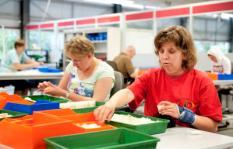 NAALDWIJK - Werkzaamheden op de sociale werkplaats Patijnenburg. Het kabinet debatteert medio 2011 over de bezuiningen op de sociale werkvoorzieningen. ANP XTRA ROOS KOOLE ** Beelden zijn modelreleased**