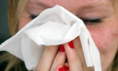 ZOETERMEER - De kenmerken van hooikoorts zijn oa niezen, jeuk in de neus een verstopte neus of een loopneus. ANP XTRA LEX VAN LIESHOUT