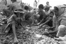 In de wijk Pagla in Dhaka hakken enkele honderden vrouwen en kinderen dagelijks zo'n 100 bakstenen in kleine stukjes, die voor het aanmaken van beton worden gebruikt. De Tros zendt op 22 mei de aangrijpende documentaire uit getiteld: Stop de kinderslavernij!