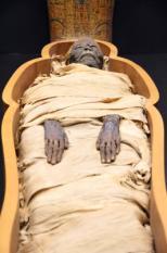 Een Egyptische mummie in een open sarcofaag.