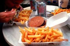Ongezond eten. Hamburger, patat, snacks.