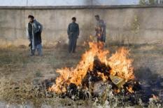 TARIN KOWT - Afghanen verbranden opium in Tarin Kowt. ANP PHOTO DEFENSIE HENNIE KEERIS