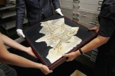 ROTTERDAM - Zes uitzonderlijk goed bewaard gebleven fossielen van gevederde dinosauriers uit het Chinese Liaoning zijn nu - in bruikleen van het Natuurhistorisch Museum Beijjing - voor het eerst in Europa te zien tijdens de expositie 'Draakjes met Veren' in het Natuurhistorisch Museum Rotterdam.   ANP PHOTO ROBERT VOS