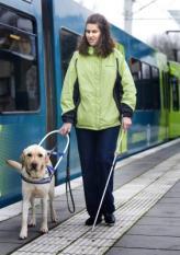 NIEUWEGEIN - De blinde Suzanne van den Bercken met haar blindengeleidehond Delphy bij de tram van Connexxion. ANP PHOTO XTRA KOEN SUYK